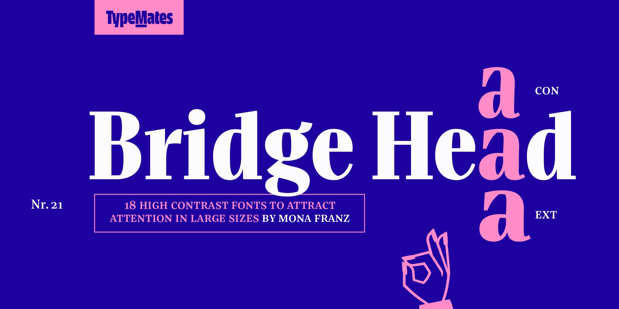 TypeMates-BridgeHead-MonaFranz-00